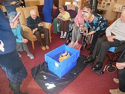 Claremont Lodge Care Home Duckling Hatching Project